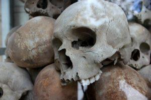 skulls-300x200