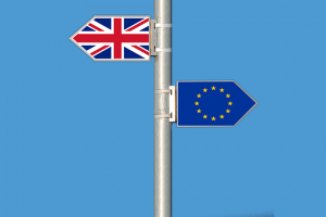BrexitFlags-300x200